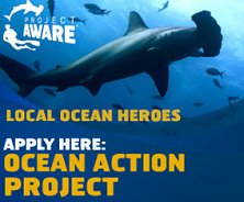 Apply here - Ocean Action Project